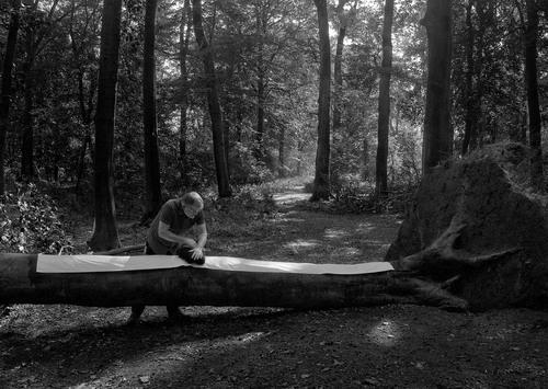 Helmut Heinze: Prägearbeit im Wald, 2015 (Foto: Patrick Fritz)